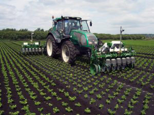 Electrically driven vision guided within-row mechanical weeder