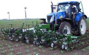 Hydraulically driven vision guided within-row mechanical weeder